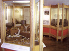 Interior view of museum, Glastonbury Lake Village Museum, Glastonbury, Somerset